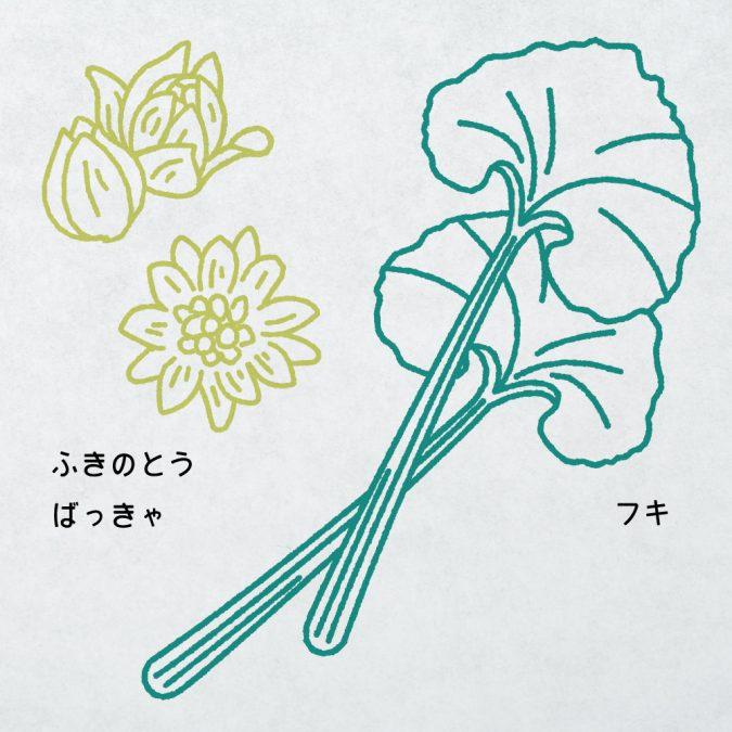 山菜紹介ページ